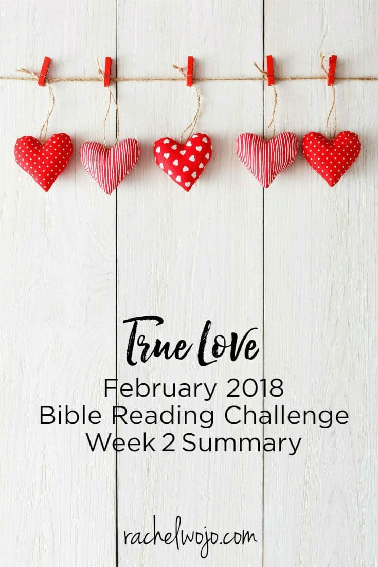 Welcome to the February 2018 Bible Reading Plan Week 2 summary! In the last week, the Bible reading plan passages about true love couldn't have been more timely. My heart has been wrenched for one of my neighboring community suburbs as two policemen lost their lives on a 911 call. And I can hardly digest all the heartache and aftermath of the Florida school shootings from last week. All I know is that we need Jesus so very desperately. His love is all that can save this world. Let's review the Bible reading plan passages for week 2.