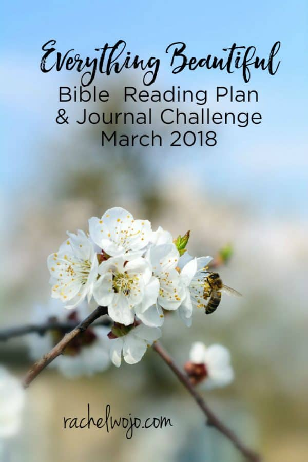 March 2018 Bible Reading Plan and Journal Challenge