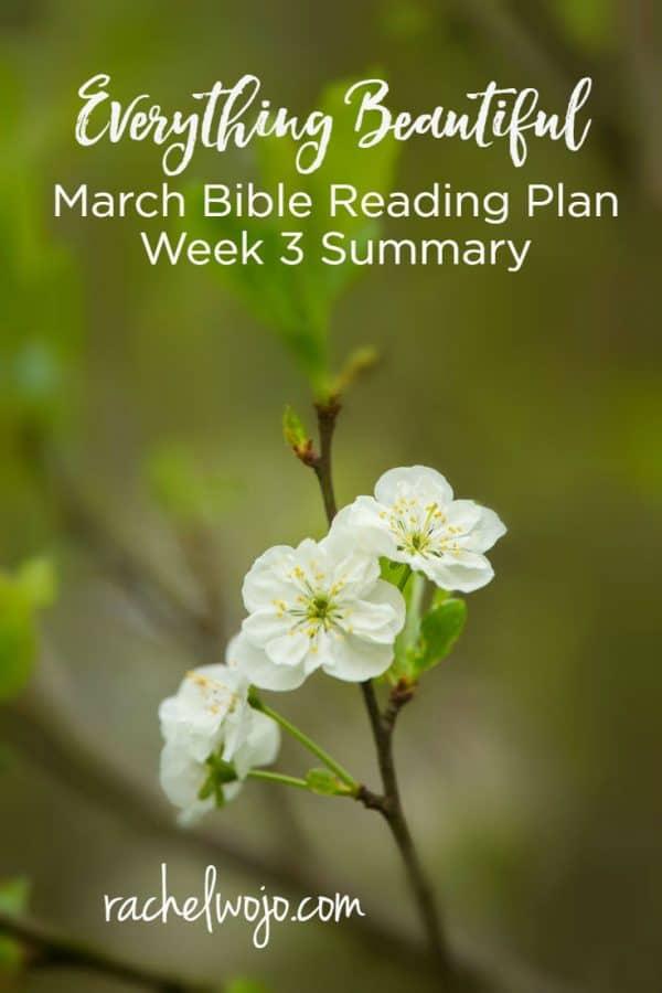 Everything Beautiful Bible Reading Plan Summary Week 3
