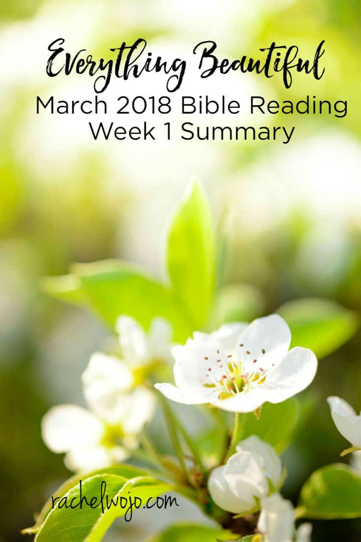 Welcome to the March 2018 Bible reading plan week 1 summary! What a blessing the Everything Beautiful Bible reading plan has been so far this month! The Scriptures are providing important reminders of keeping an eye open for God's beautiful gifts every day of the week. I'm so grateful that the journal is providing...