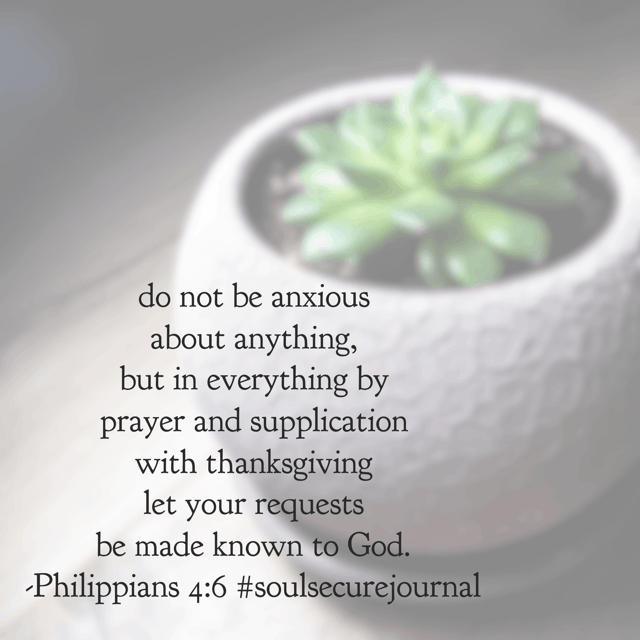 When the enemy fills us with worry and doubt, no matter our location, frustration, or indignation, prayer with a thankful heart changes a worrier into a warrior. Not because of our words, but because of God's power! Hallelujah. #soulsecurejournal #biblereadingplan