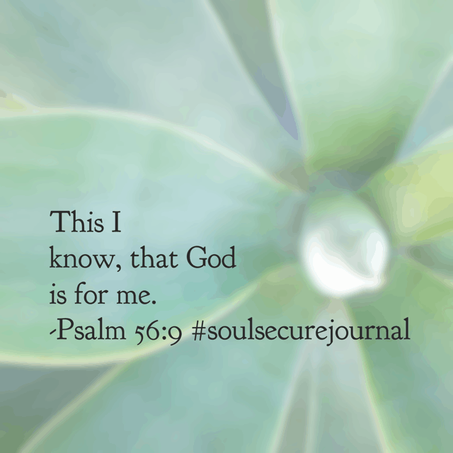 He is never against me. He is always FOR me. So when worry threatens to steal my joy, when doubt attempts to ruin my trust, when fear sneaks in and creates heart havoc, this truth I can bank on: GOD IS FOR ME! #soulsecurejournal #biblereadingplan