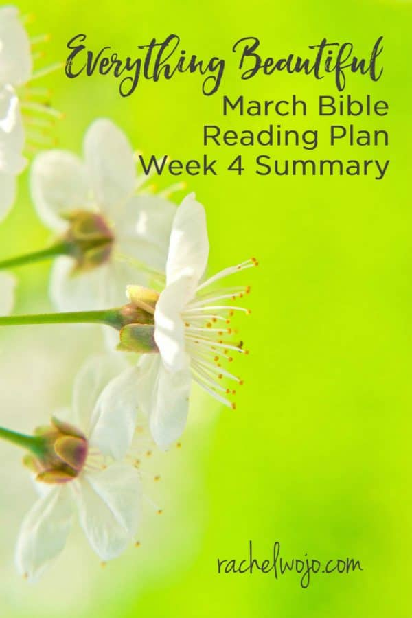 Everything Beautiful Bible Reading Plan Summary Week 4