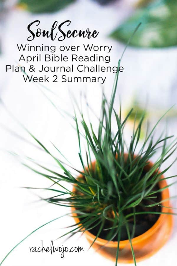 Soul Secure Bible Reading Plan Week 2 Summary