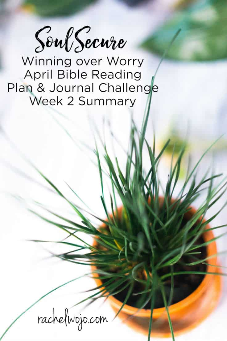 Welcome to the Soul Secure Bible reading plan week 2 summary! The days and weeks are flying by; can you believe we are already on week 2 of this month's Bible reading challenge?   For those of you who are here for the first time, each month I host a daily Bible reading challenge and each week, we glance back at the Bible reading plan and journal. We review the verses I highlighted in the daily reading. Week 2 proved to be another challenging week for me personally but God's Word truly is our source of strength, isn't it? Let's take a glance back at week 2 to remind ourselves how to truly win over worry. Ready?
