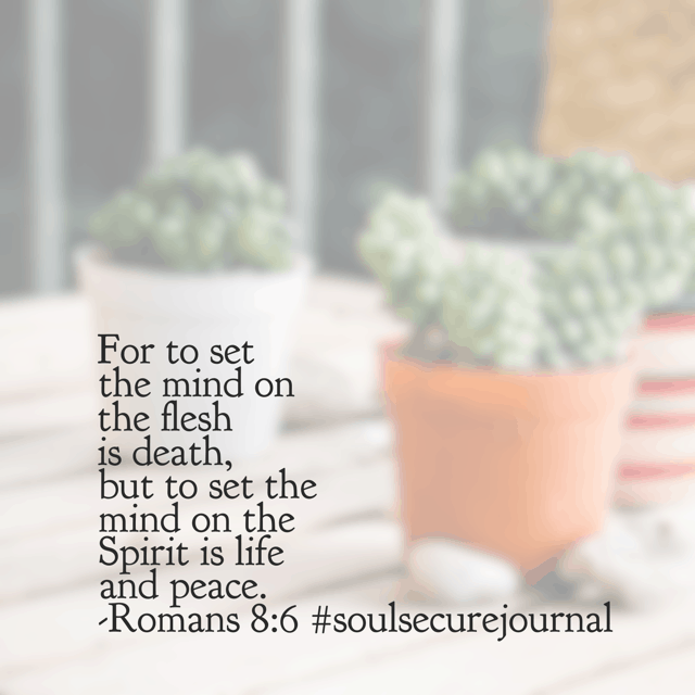 "On this beautiful Monday morning, I'm reminding myself to intentionally place my mind on the Spirit. A full schedule can be peace-filled."", amen? #soulsecurejournal #biblereadingplan #winningoverworry"