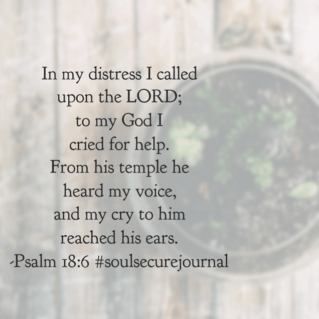 He has heard me time and time again. God will do the same for you. Distressed? He hears you. Anxious? He knows. Worried? He is with you. Your cry to the Father never goes unnoticed.He will deliver you! #biblereadingplan #soulsecurejournal #winningoverworry