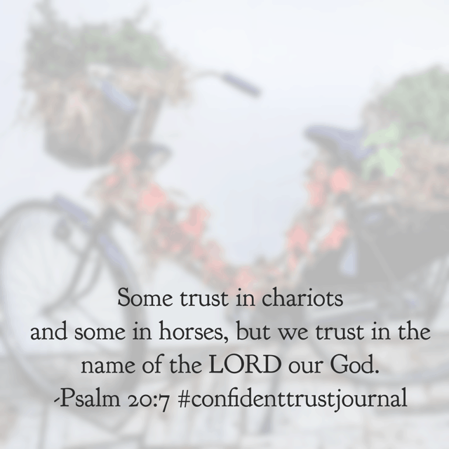 Things of this world will let you down. Your car breaks down. Your house needs repairs. People will disappoint you and desert you. But God? He never leaves you. He is always near and he can always, always be trusted. He loves you that much!! Rest in Him tonight!#confidenttrustjournal#biblereadingplan