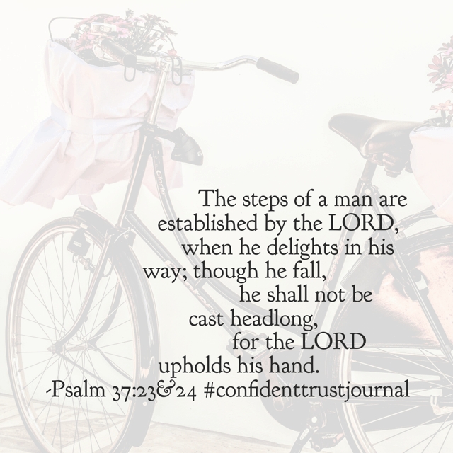 You see, those falls are gonna happen because we aren't perfect. Spill, bumps in the road, bruises even, they will come. But when they come, if we are trusting the Lord fully? We won't fall straight out on our heads. Because he's right there. Holding our hand. Have a super Saturday knowing that God's still on the throne!