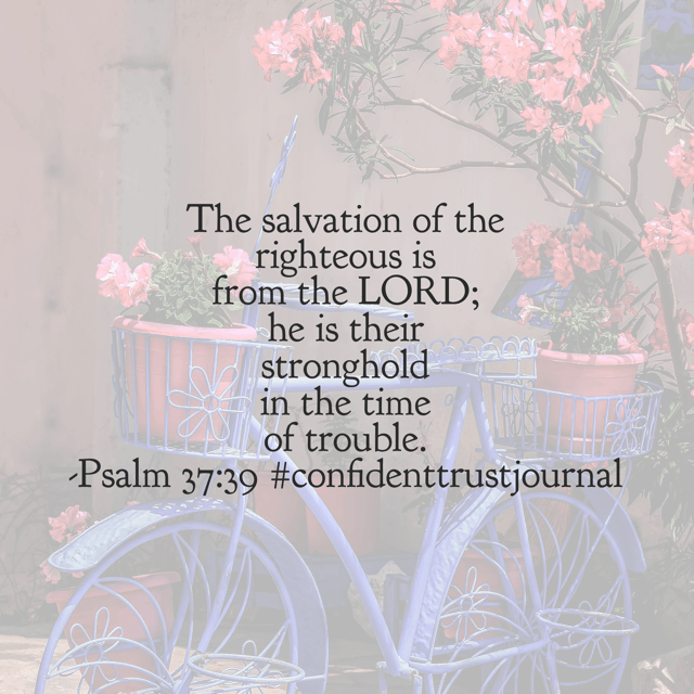 Times of trouble happen. You may even feel like your entire life has been a time of trouble. But God is our stronghold and can always be trusted to be there for us, no matter the season. He is worthy of our trust!