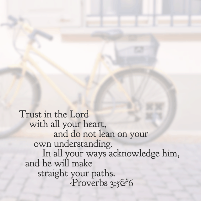 Two verses I remind myself of daily. Maybe I'm a natural born questioner; I don't know. But the Lord has straightened my path so many times that I can look back on His work in my life and know that He is worthy of my trust. He is all-powerful and I'm praising Him for it this morning.
