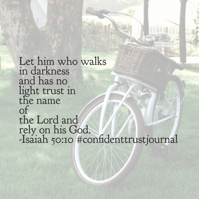 Rely on. I love that phrase so much. Holding on to it today. You too? #confidenttrustjournal #biblereadingplan