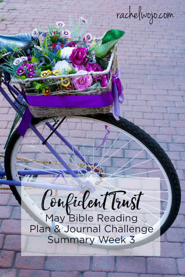 "Welcome to the Confident Trust Bible reading plan and journal summary week 3! Here we are at the weekly roundtable review of the monthly Bible reading challenge. Does trusting God seem easy for the ""big issues"" and more difficult in the details of life? This week's passages reinforced God's promises that He is IN the details!"