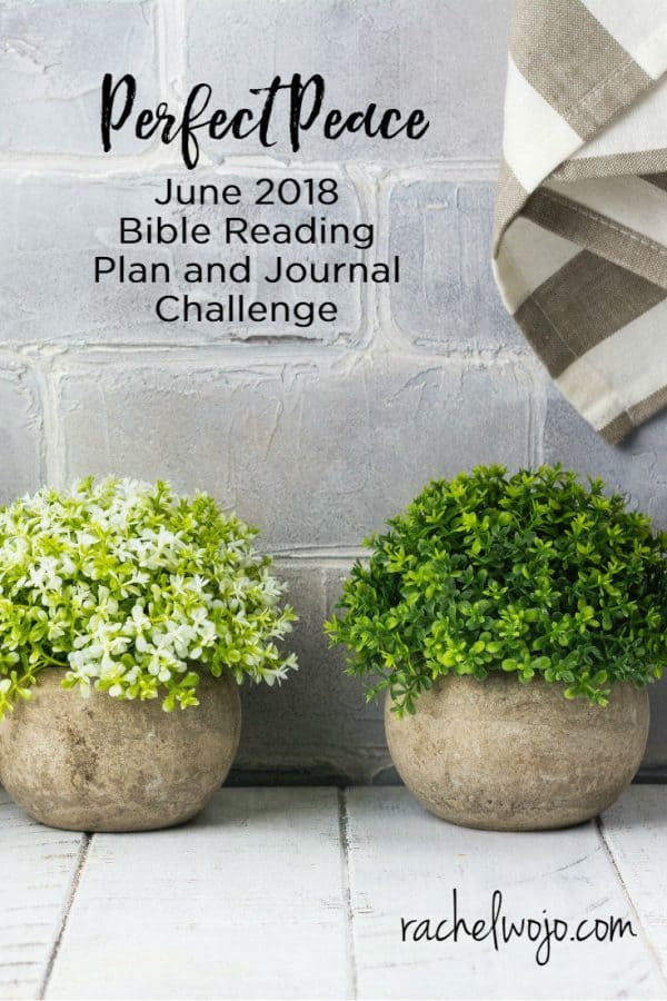 June 2018 Bible Reading Plan and Journal Challenge