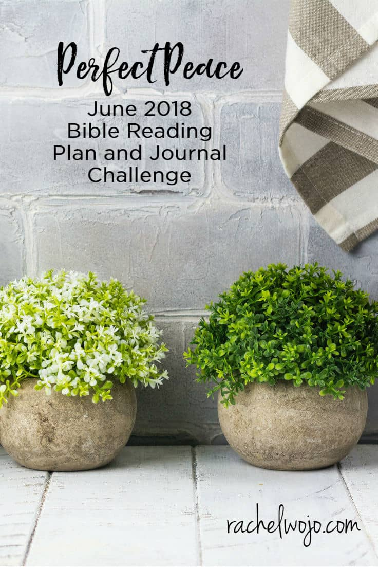Welcome to the June 2018 Bible reading plan and journal challenge! If this is your first time here, we're especially glad to have you! Together, our community has completed over 25 Bible reading challenges, including annual reading challenges and monthly reading challenges. I've developed all sorts of strategies to help us continue to stay in God's word faithfully and there is nothing like this monthly system we are working together. Check out the details  below for this month's challenge!