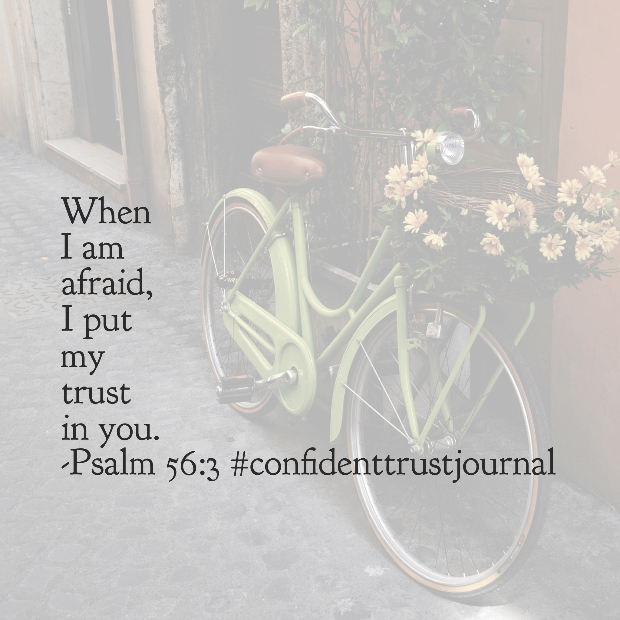 #confidenttrustjournal #biblereadingplan
