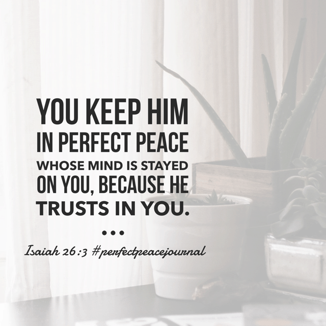 So thankful for his peace this morning. When I purposefully place my mind on his power and glory and love? Then he provides peace. In all circumstances, through all situations, in every detail.#biblereadingplan#perfectpeacejournal