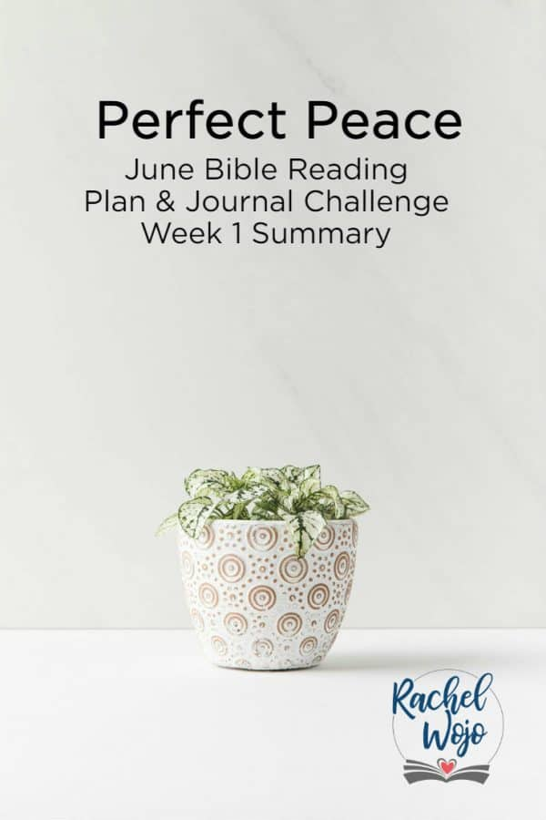 Perfect Peace Bible Reading Summary Week 1
