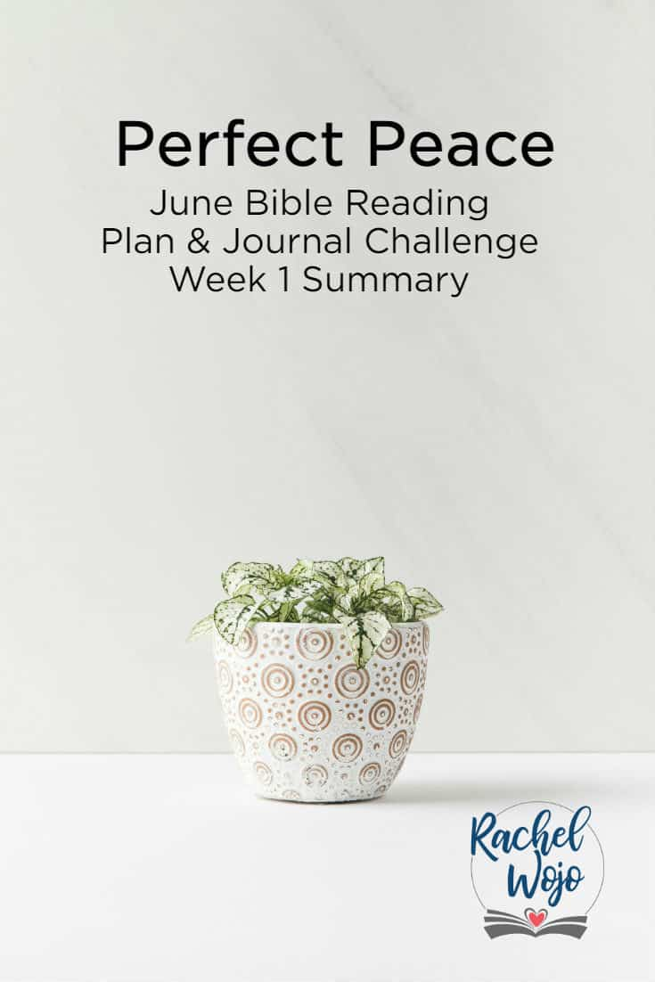 Hey there! Welcome to the Perfect Peace Bible reading summary week 1. God is working in our hearts and our online community and it's just so cool to be a part! Thank you for helping me stay accountable to be in God's Word each day; I'm truly grateful. ..