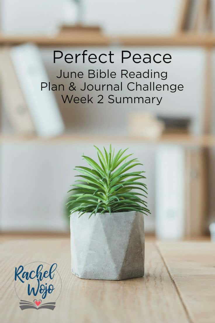 Welcome to the Perfect Peace June Bible reading challenge week 2 summary! I'm thrilled to have you stopping by so we chat a little about peace in this world. Peace is something we all long for, yet it seems so many are still searching for true peace. If this is your first time here, thanks for stopping by! Each month I host a Bible reading challenge and our community reads the passages each day. Each week, we review the previous week of reading so that we can retain all we are learning. So here we go!
