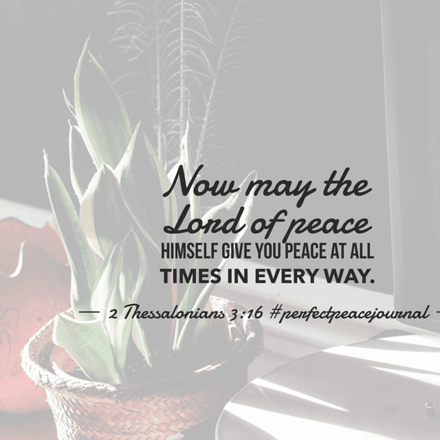 True peace is found in Jesus and comes from Him as a gift to us. When we ask for it, He answers because He IS peace and His presence is continually with us! What a blessing! Have a terrific Tuesday remembering that peace is only a prayer away! #perfectpeacejournal #biblereadingplan