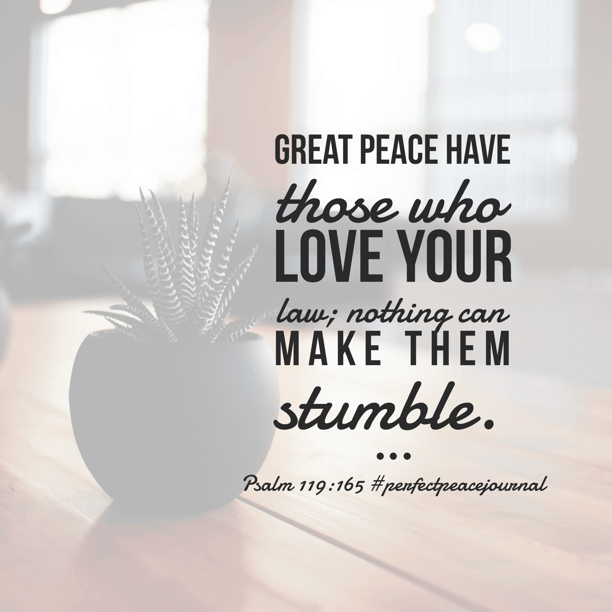 The psalmist knew the secret to peace—loving and knowing God's Word! Have a terrific Tuesday.#perfectpeacejournal#biblereadingplan