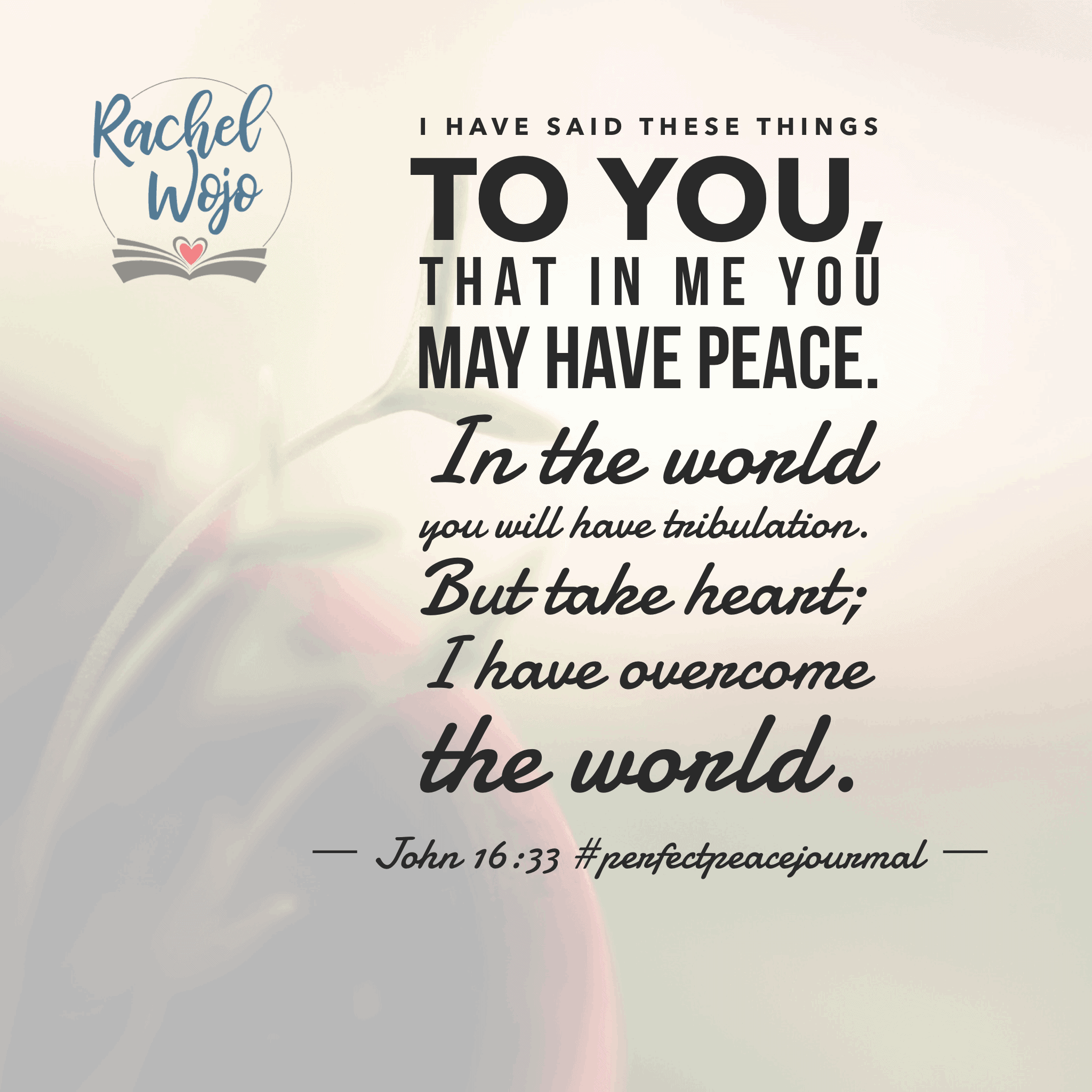 Peace won't be found in anything or anyone except Jesus. In Him, we have perfect peace. So thankful for this month of June and the#perfectpeacejournal#biblereadingplan! Tomorrow's July 1st; be sure to join in for a month of recognizing God is bigger than whatever we face