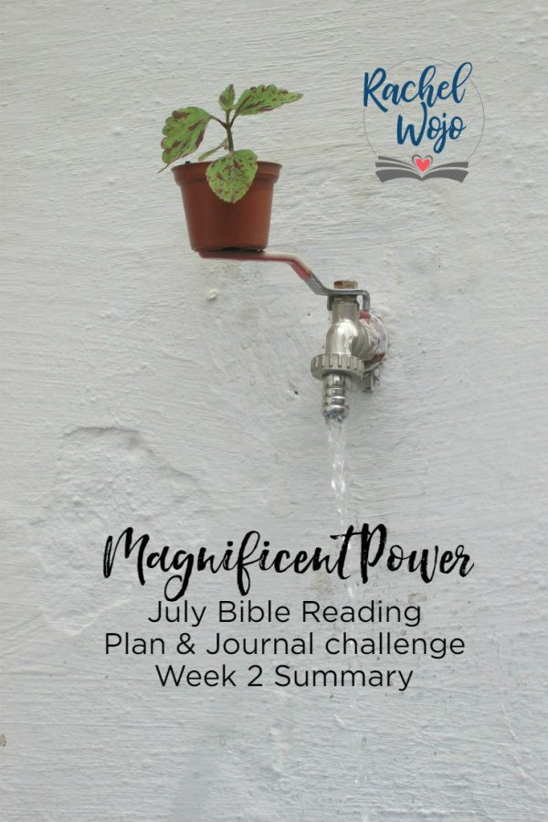 Magnificent Power July Bible Reading Challenge Week 2 Summary