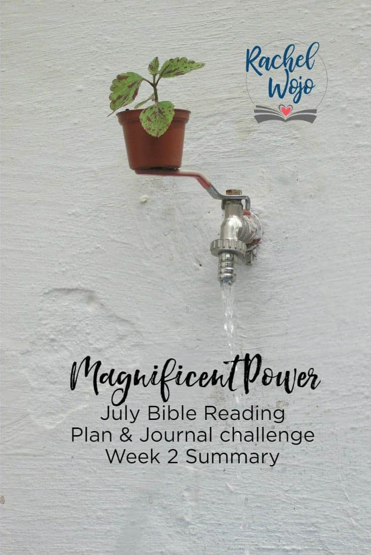Welcome to the Magnificent Power July Bible reading challenge week 2 summary! If this is your first time here, welcome! Each month I host a Bible reading challenge here on the blog and each week we take a glance back at the previous week of Scriptures in order to retain the concepts we're learning. This month's challenge is all about recognizing God is bigger than anything we're facing or will face. Wow, the passages are definitely spurring us on to realize the power of God and our inability to wrap our heads around it. Let's take a moment to review, ready?