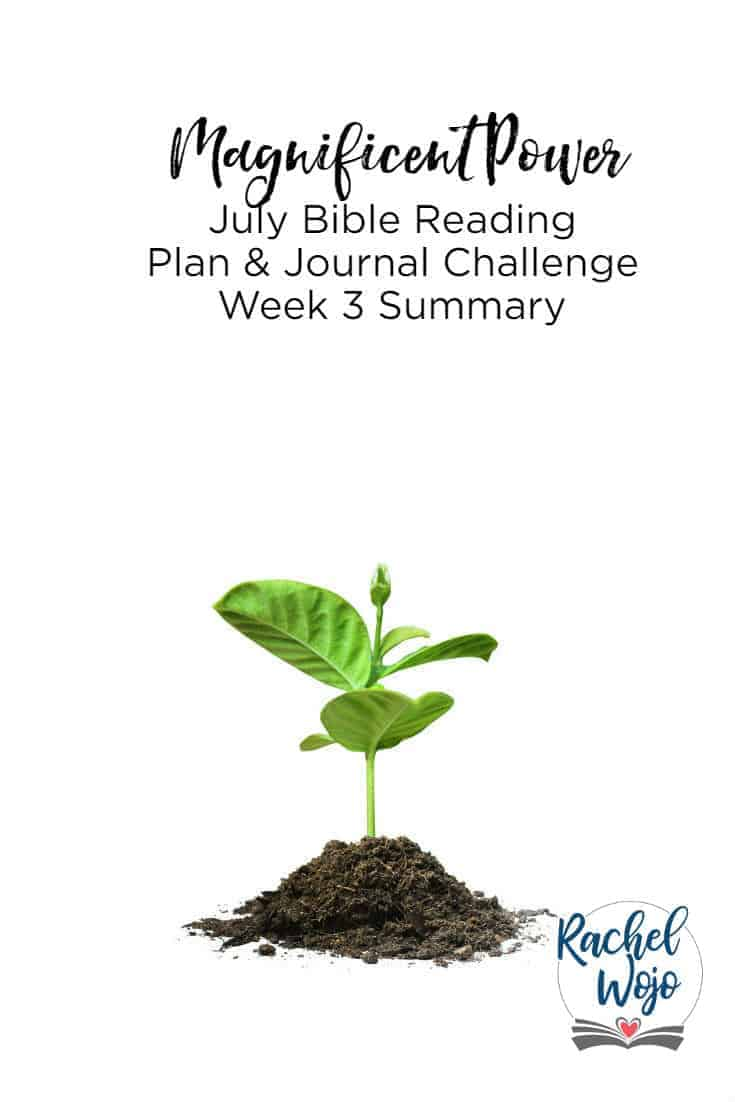 Welcome to the wrap-up for Magnificent Power: Remembering that God is Bigger than Anything. Each week, I post a review of the week's passages so that we can continue to retain what we are reading. If this is your first time here, then welcome! Each month I host a focused Bible reading challenge and this post is a reminder to reflect on the passages read daily. Let's check out the Magnificent Power Bible reading challenge week 3 summary together, you ready?