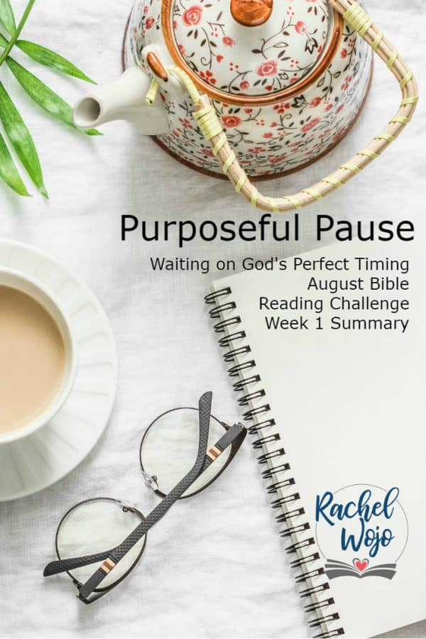 Purposeful Pause Bible Reading Week 2 Summary
