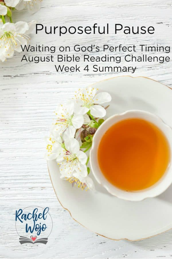 Purposeful Pause Week 4 Bible Reading Summary
