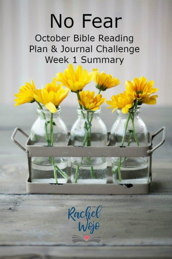 No Fear Bible Reading Plan and Journal Week 1 Summary