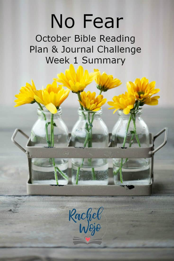 Hi and welcome to the No Fear Bible Reading plan and journal week 1 summary! Whew, that's a mouthful, isn't it? If this is your first time here, then I am so glad to have you. Each month I host a Bible reading challenge and each week, our community glances back at the week before to review and retain what we read and learned. What a wonderful week of reading we've experienced so far in this month's challenge of choosing faith when we feel afraid. Let's review!