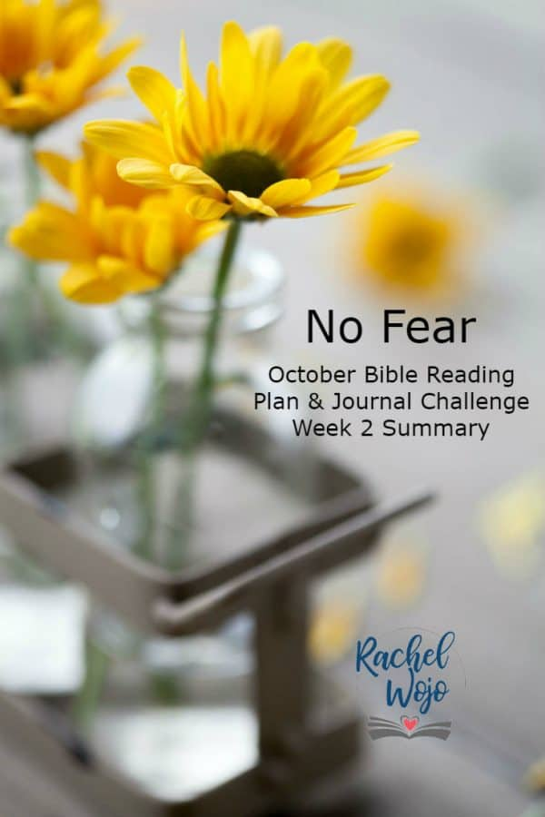 No Fear Bible Reading Plan and Journal Week 2 Summary