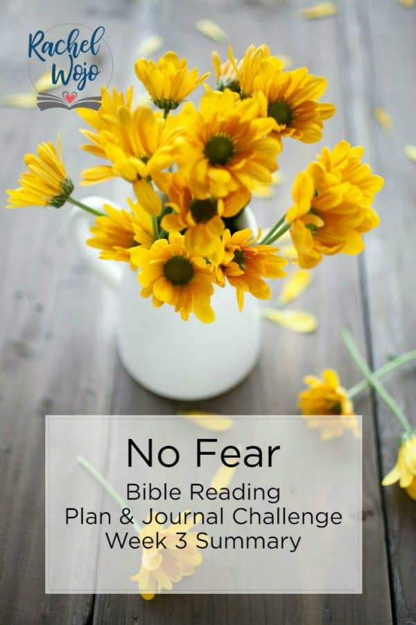 No Fear Bible Reading Plan & Journal Challenge Week 3 Summary