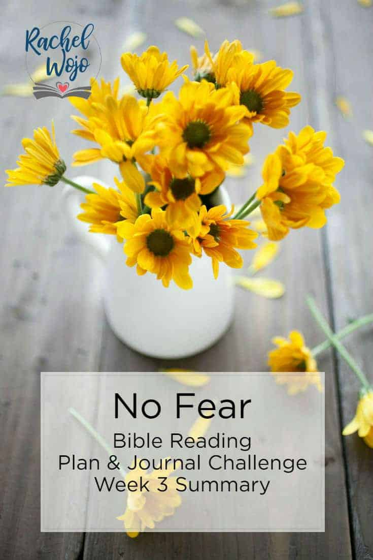 Do fearful thoughts threaten to paralyze you? That's exactly what the enemy longs to do. He will use whatever he can to prevent you from moving forward in your work for God! Welcome to the No Fear Bible reading plan & journal challenge week 3 summary.