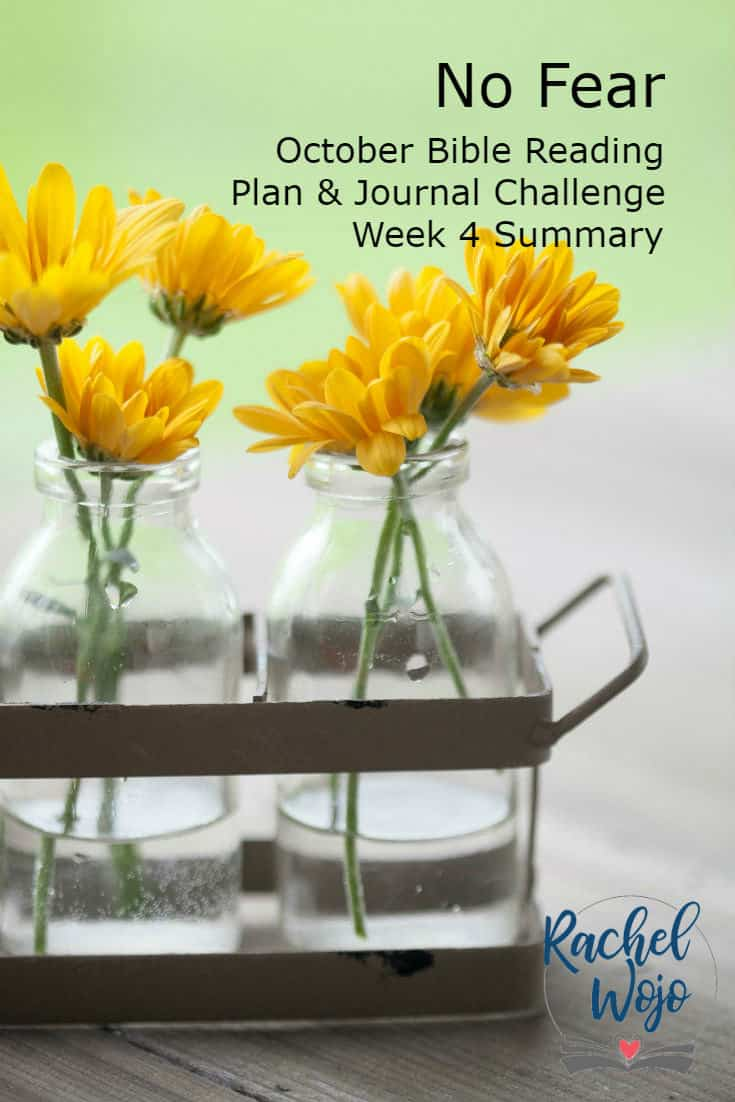 No Fear Bible Reading Plan & Journal Week 4 Summary