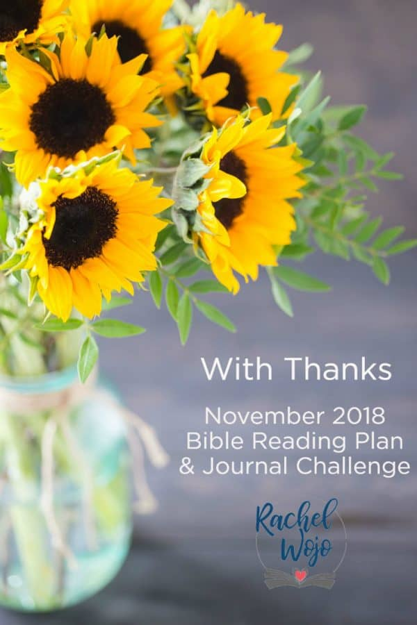 November Bible Reading Plan and Journal Challenge