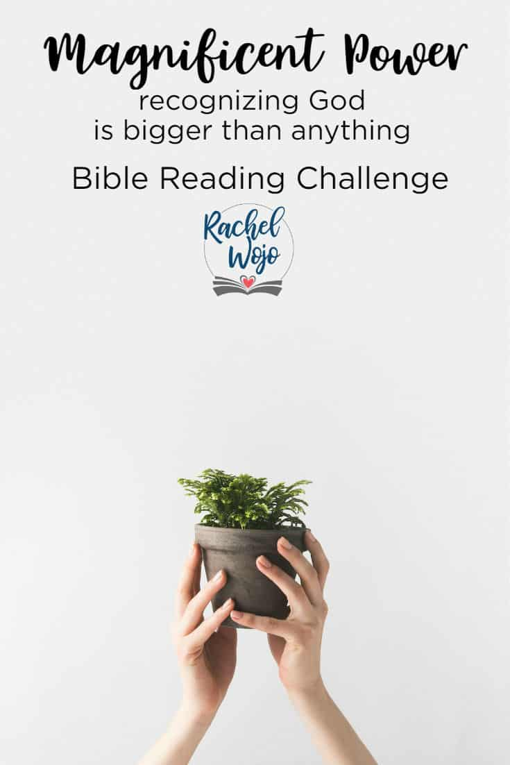 Magnificent Power Bible Reading Challenge