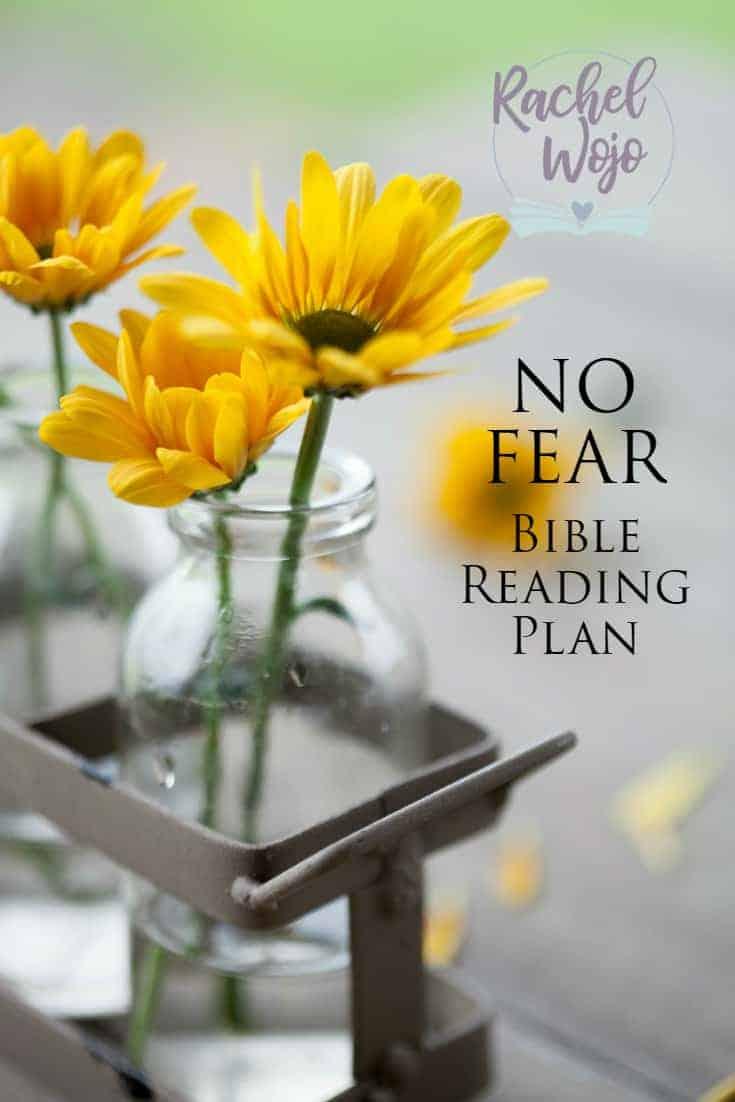 No Fear Bible Reading Plan